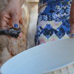 Dia Mundial da Água: tutelar um bem de todos