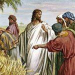Recorda-te que foste escravo na terra do Egito¹